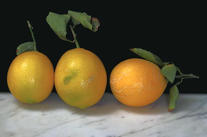 tres limones1